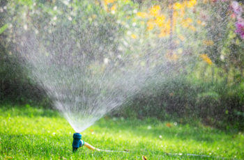 Sprinkler irrigation system watering lawn in garden